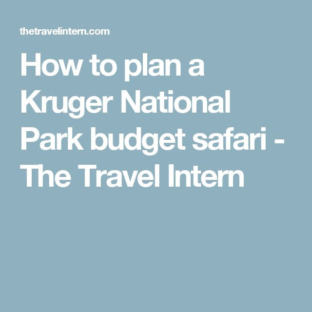 How to plan a Kruger National Park budget safari - The Travel Intern