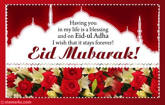 Happy Eid ul Adha...