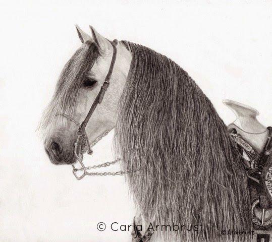 "Carla Armbrust: ""The Stuff of Dreams"". Fine Art Original. Pencil drawing. Gaphite pencil on Fabriano Artistico watercolor paper. Horse portrait.  Andalusian Stallion. Equine. Equine art. Domestic animal."