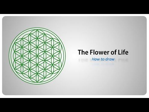 Best 25 how to draw sacred geometry ideas on pinterest for How to draw the flower of life step by step
