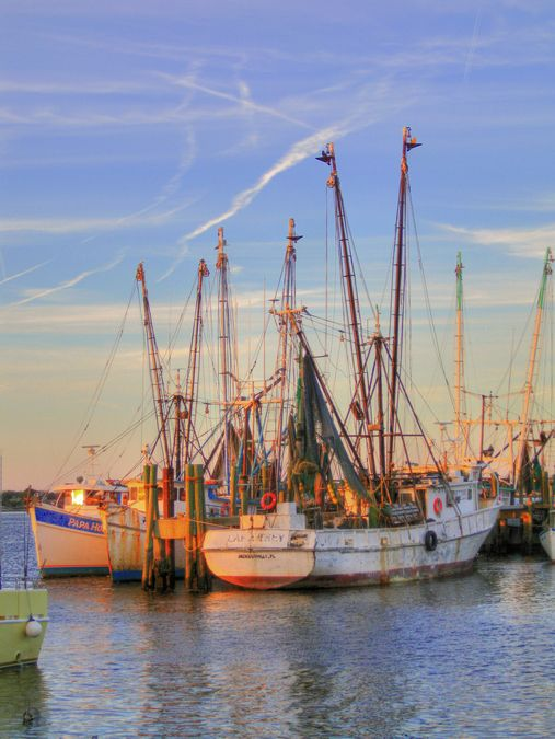8 best mayport fl images on pinterest florida diners for Deep sea fishing jacksonville fl
