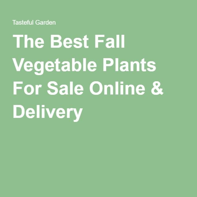 The Best Fall Vegetable Plants For Sale Online & Delivery