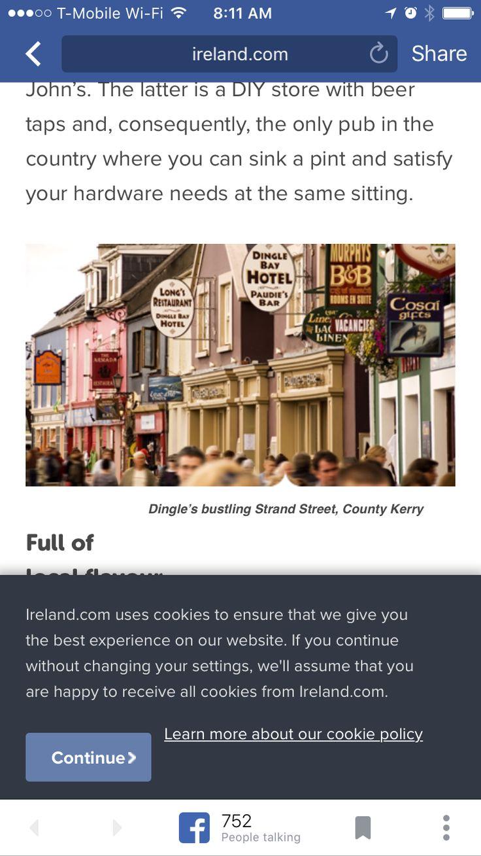Pin By Carolyn Moon On Ireland Diy Store Beer Taps Ireland