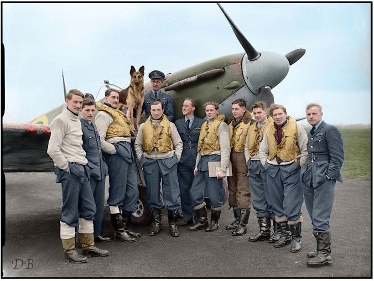 "Pilots of No 54 Squadron RAF gathered round a Supermarine Spitfire Mark IIA at Rochford, Essex. On the wing sits their Commanding Officer, Squadron Leader, Robert Findlay Boyd DFC & bar, with the squadron mascot ""Crash"". ca. April 1941"