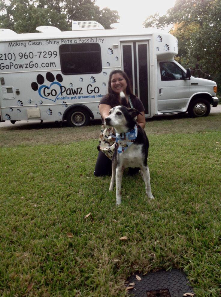 Go Paws Go best Pet Grooming Salon in San Antonio