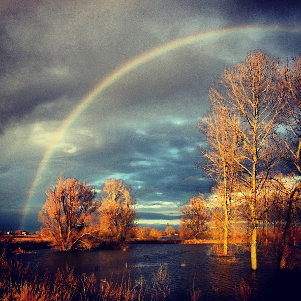 Highwater, Ooij polder #sky #scenic #clouds #river #redbol #rainbow