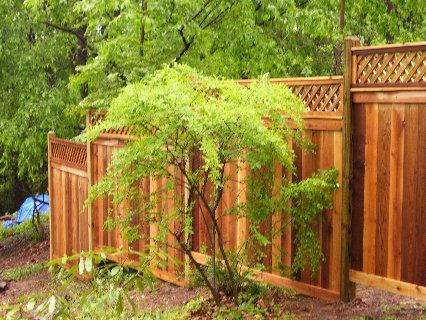 Landscaping Around A Privacy Fence | Fence Construction, Picket Fences & Post and Rail in Westchester PA ...