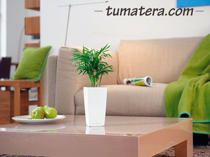 Encuentralas en: http://www.tumatera.co/products/matera-inteligente-mi-090918minicubi/