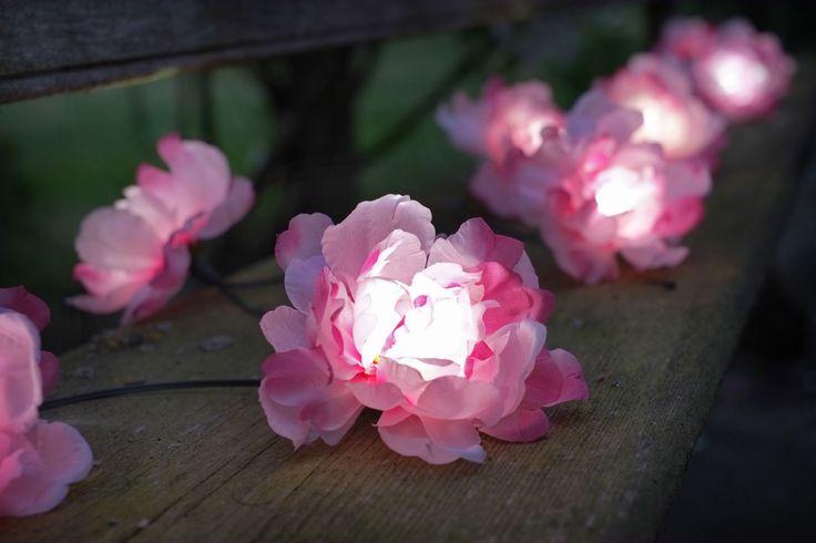 Hai un cuore #romantico? Non farti sfuggire queste bellissime #Rose a Energia Solare