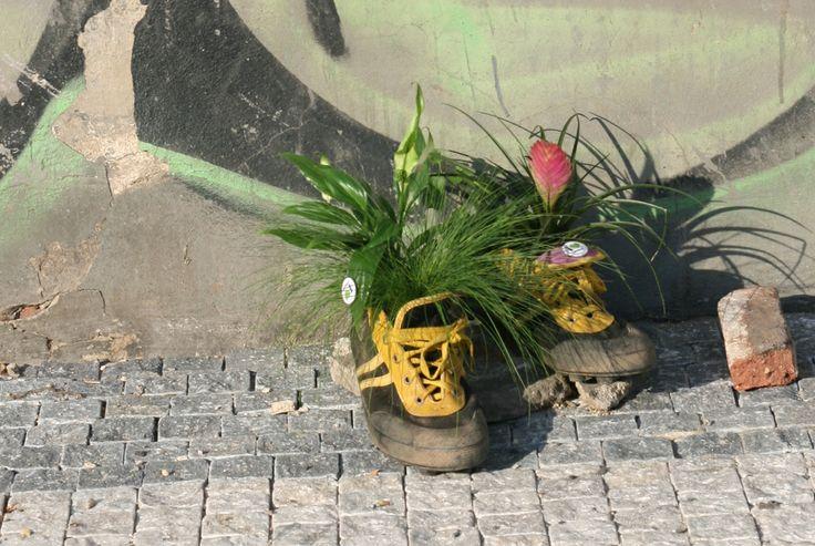 Guerrilla gardening in Prague | Informuji.cz