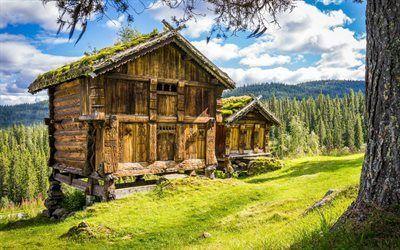 Scarica sfondi foresta, vecchio fienile, montagne, norvegia