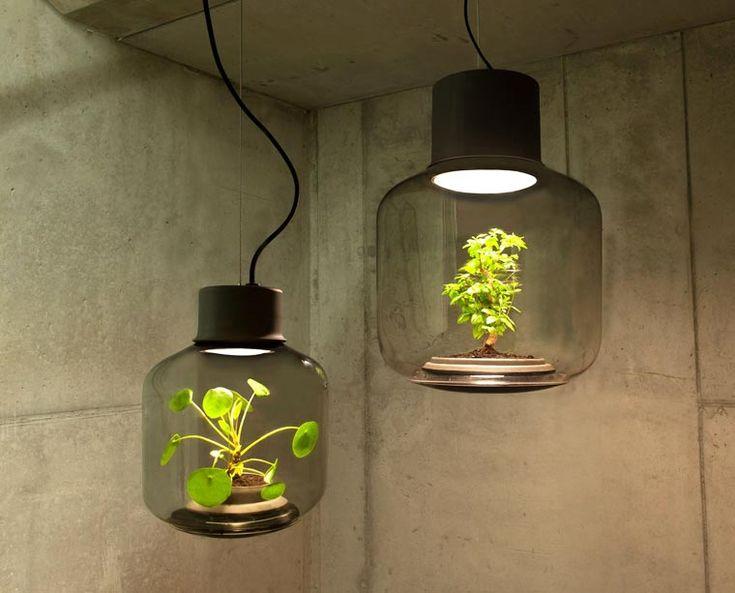 Mygdal Plantlamp est un projet des designers allemandsWe Love Eames, qui ont imaginé de jolies lampes pour faire pousser vos plantes en intérieur. Ces lampe