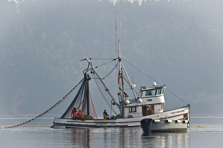 1000 images about vessel on pinterest uss north for Purse seine fishing