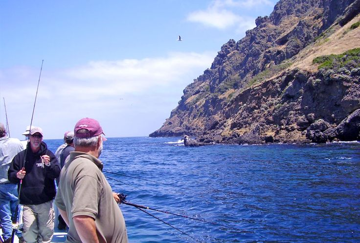 Take a deep sea fishing trip out of Newport Landing