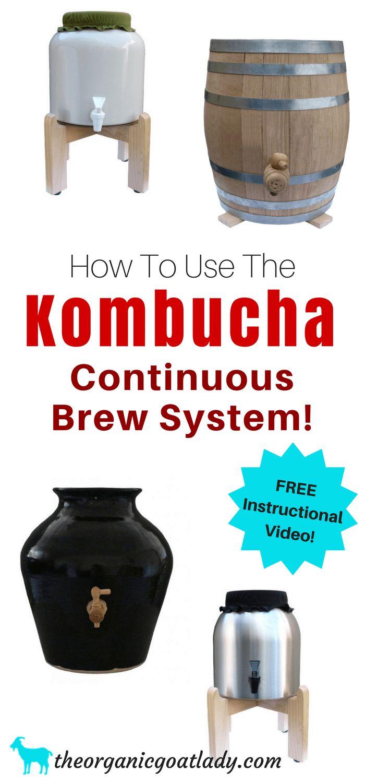 How To Use The Kombucha Continuous Brew System Free Instructional Video, Kombucha Flavors, Kombucha Recipes,