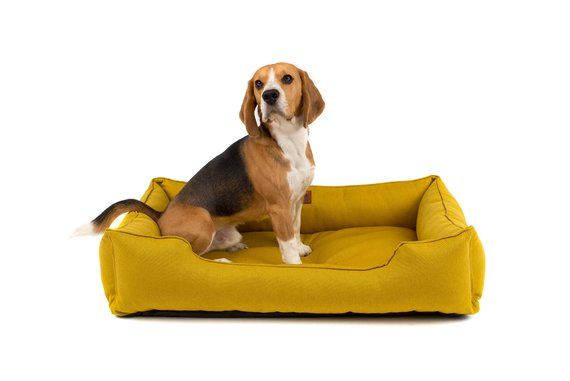 Pets At Home Wainwright Memory Foam Animal House Dog Life Memory Foam