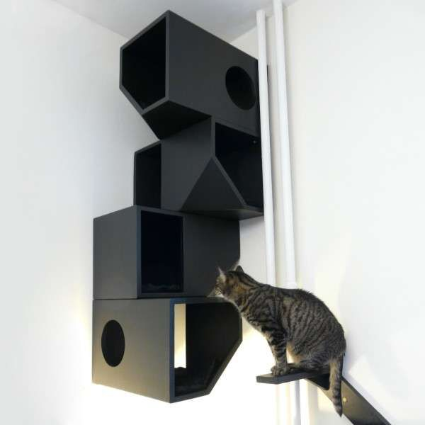 Colorful Cat Apartments - The Catissa by Mojorno is a Contemporary Home for Precious Pets (GALLERY)