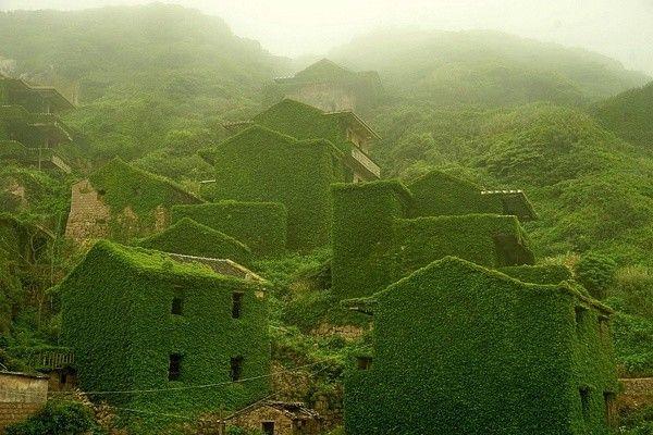 Shengsi, un archipel de près de 400 îles à l'embouchure de la rivière Yangtze en Chine, détient un secret enveloppé dans le temps – un village de pêcheurs abandonné et récupéré par la nature.  En effet, le lierre et autres plantes grimpantes ont repris le dessus et ont avalé presque toutes les maisons. Quand la nature reprend ses droits, elle ne le fait pas qu'à moitié ! Ces photos de Tang Yuhong offrent un aperçu de ce qu'il reste du village et de ses constructions sur l'île de Goqui.