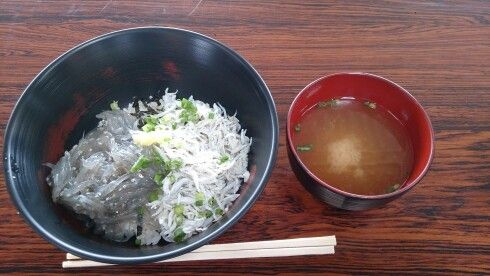 田子の浦港で食べたしらす丼
