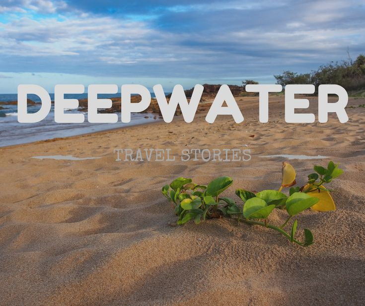 Deepwater National Park on Queensland's Discovery Coast is a gorgeous, relaxing spot for camping. It's perfect for relaxing, family-friendly camping!