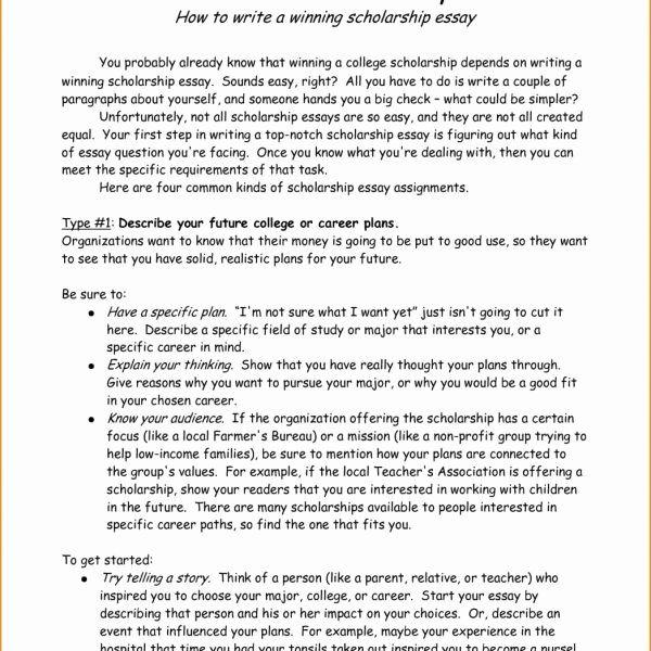 Reference Letter For Nursing School Elegant Essay Example Scholarship Examples
