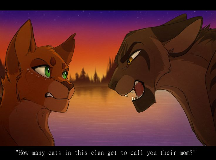 How Many Warrior Cats Fans Are Tehre