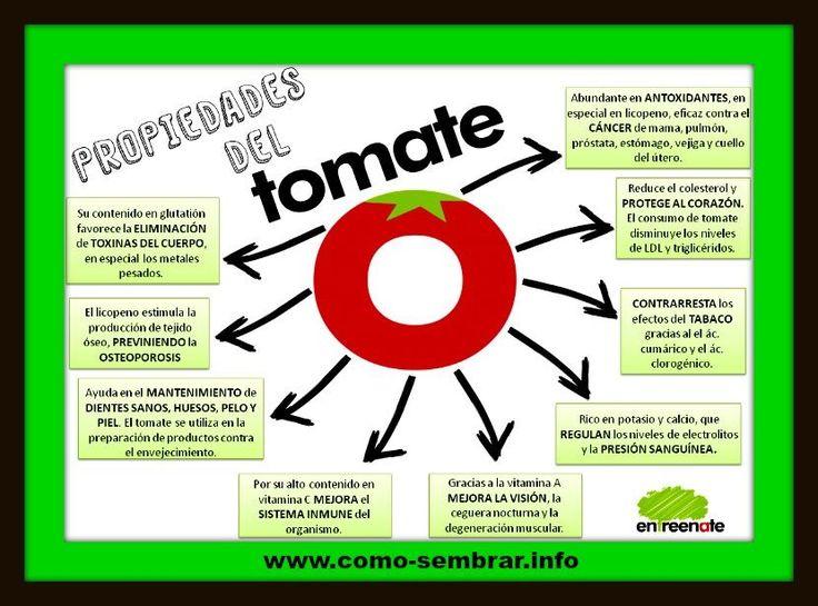 beneficios y propiedades del jitomate