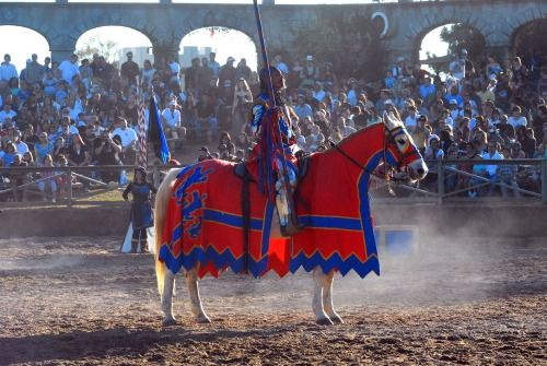 Save with discount Texas Renaissance Festival tickets. Ready for some 16th-century fun at the nation's largest Renaissance festival in the country?  Tis the season for the 40th Texas Renaissance Festival kicking off this Saturday, October 11, for eight consecutive weekends.