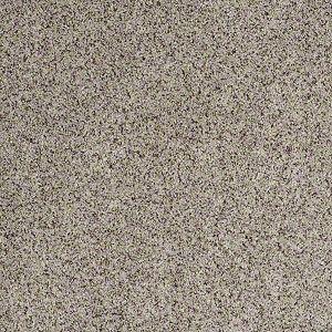 Good Move - Tuftex - Shaw - Carpet - Weathered Gray