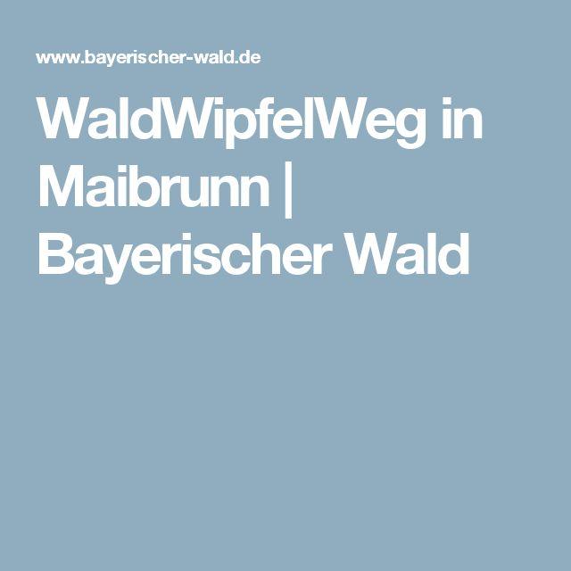 WaldWipfelWeg in Maibrunn | Bayerischer Wald