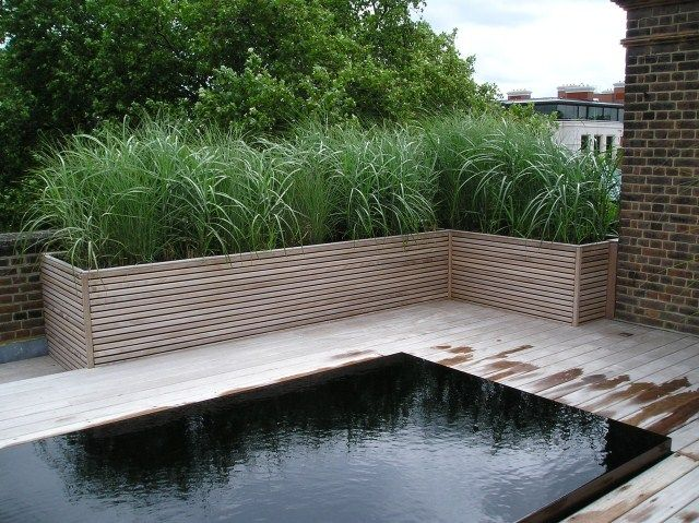 Wooden planters and decking by Peter Doy & Son. Garden design by Jinny Blom, Chelsea, London. I love the bamboo in the planters idea.