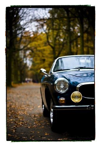 Volvo P1800, love this angle. sleek #p1800 #volvo #cool