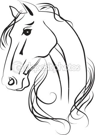 Isolated vector drawing of  horse head  love these drawing and painting of the horses thank you so much