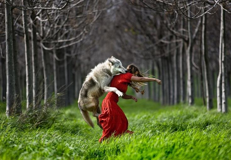 Caperucita es atacada por el lobo -Shlomi Nissim-