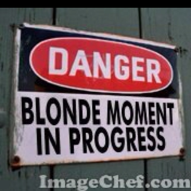 28 Best Images About Blonde Moment On Pinterest Jokes