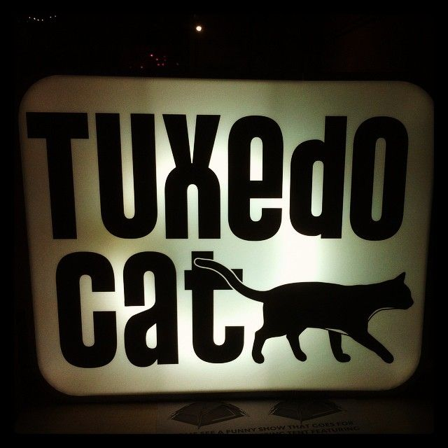 """@shaneadamczak's photo: """"Make sure you head over to @tuxedocatevents during this @melbfringe! As usual, they have an excellent eclectic program of killer Fringe shows! #TuxxyKidsForEva #Mfringe"""""""