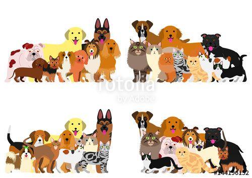 ベクター: dogs and cast group border set点
