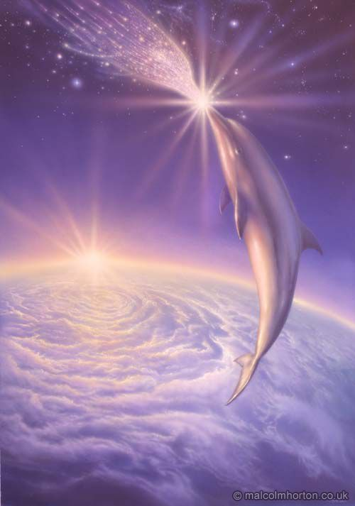 This picture represents a world beyond this one. A dolphin merging with a spirit dolphin in the great ocean of the universe.
