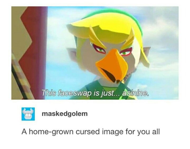 Lol Asinine Faceswap Toon Link Revali Ww Botw Legend Of Zelda
