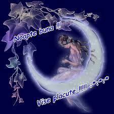 Imagini pentru mesaje de noapte buna imagini