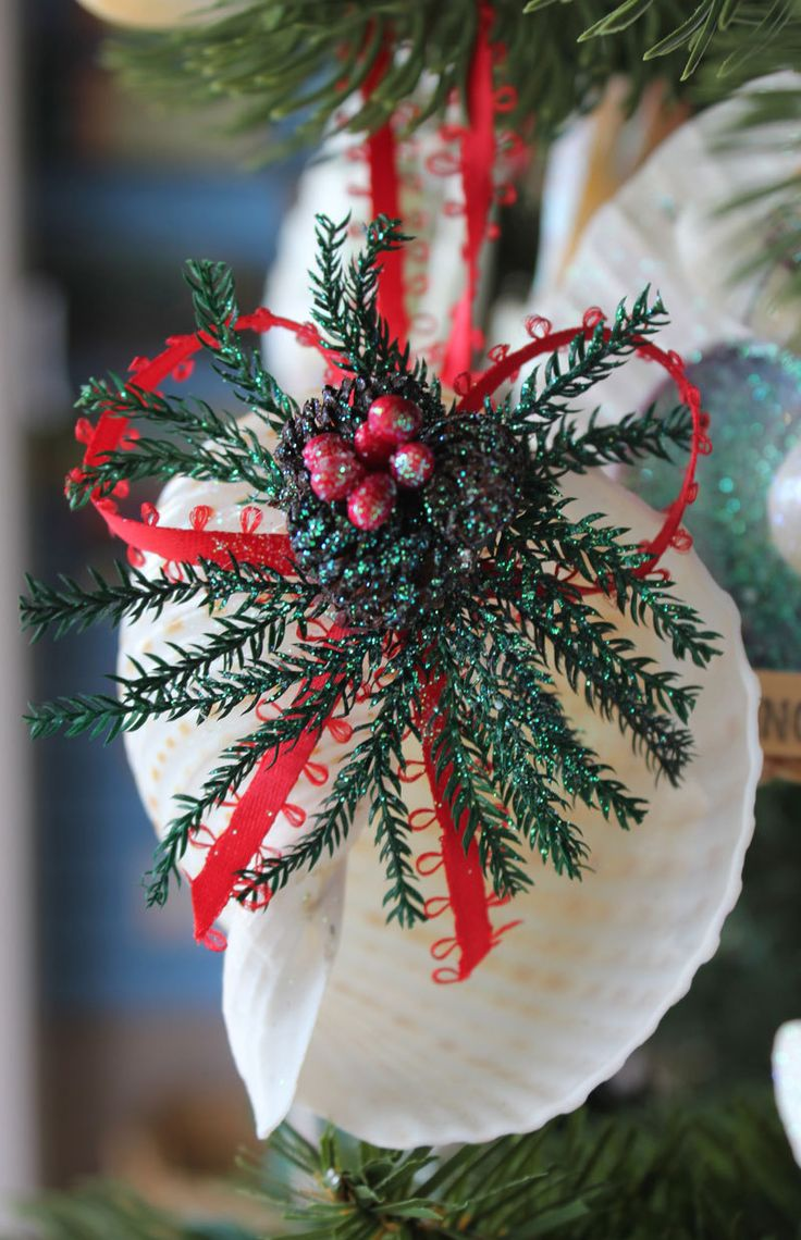 Seashell christmas ornaments - Spotted Tona Seashell Pinecone Collage Christmas Ornament Http Www Caseashells