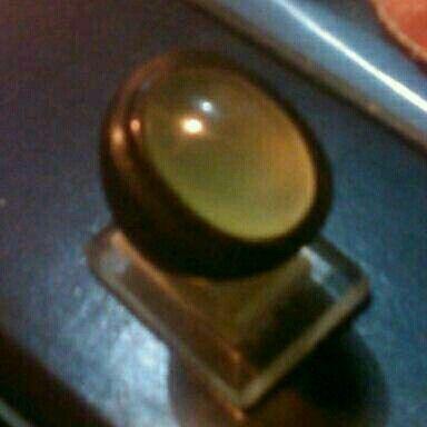 Black ring horn