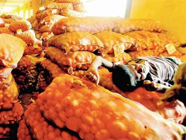 Hooghly: Farmers taking their lives because of inability to sell potatoes at reasonable prices - The Economic Times