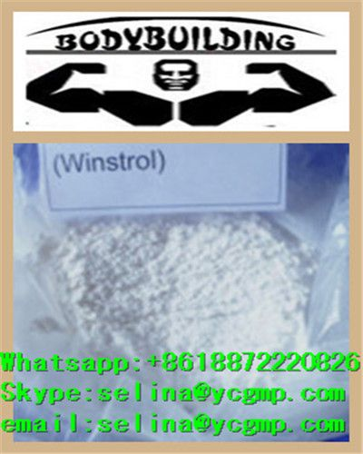Stanozolol /Winstrol  ,100% pass custom  Whatsapp:+8618872220826 Skype:selina@ycgmp.com email:selina@ycgmp.com  Winstrol is an oral steroid which often brings about much more steadier gains in muscle mass compared to the likes of Dianabol. Winstrol does not convert to oestrogen and therefore oestrogenic side effects should be of no concern to the user. Users often have a more defined look when running Winstrol compared to other steroids due to the absence of any water retention from the…