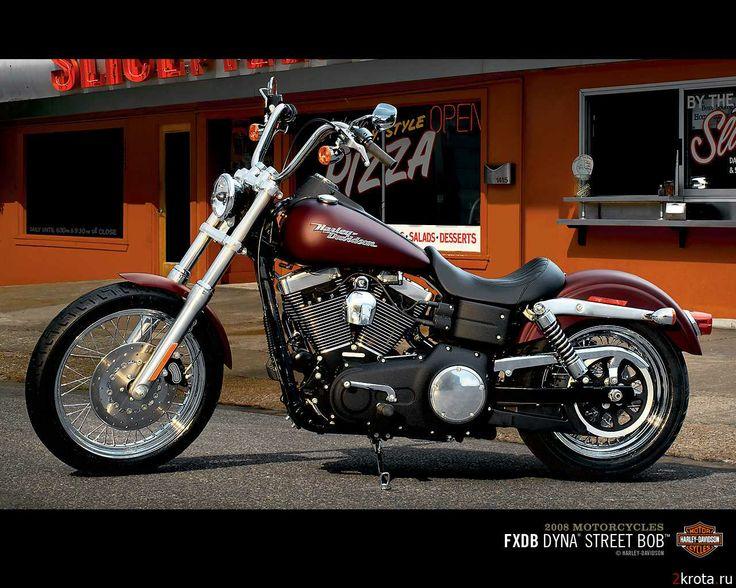 166 Best Images About Harley Davidson On Pinterest: 281 Best Images About Hells Angels & Harley Davidson On