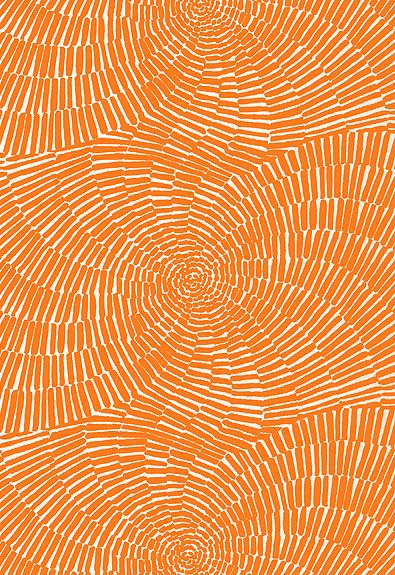 Sonriza Print Orange by Schumacher Fabric #orange #fabric