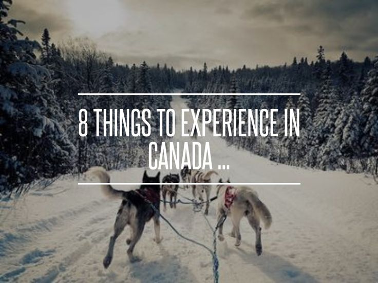 8. Maple Taffy - 8 Things to Experience in Canada ... → Travel