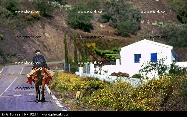 http://www.photaki.com/picture-region-of-axarquia-province-of-malaga_8237.htm