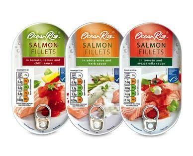 Aldi syn free salmon tins