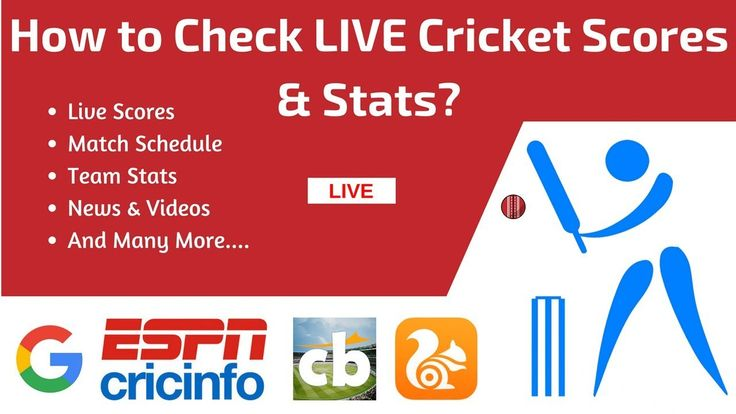 How to Check LIVE Cricket Scores & Stats? (No Live TV)